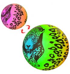 Мяч детский MS 1364