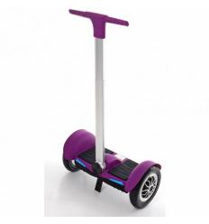 Сигвей M 3972-9 пурпурный